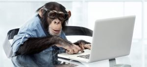 pay peanuts get monkeys 2